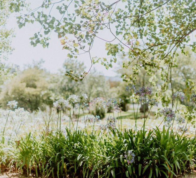 bodas-con-encanto-en-la-naturaleza-pazo-galicia